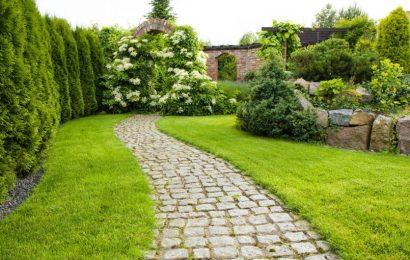 Innowacyjne metody ochrony roślin